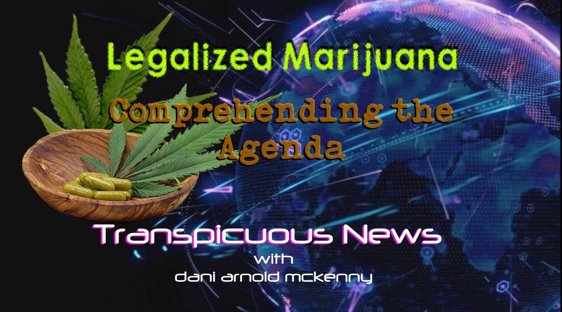 TN jan 24 cannabis
